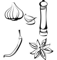 With a set of spice vector