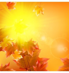Delicate autumn sun with glare on gold sky vector