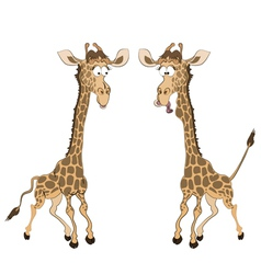 Caricature of two fun giraffes vector