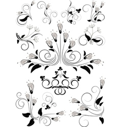 Variants flourishes decorative details vector