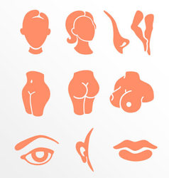 Body parts and face zones icon set vector