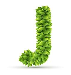 Letter j alphabet of green leaves vector