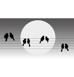Birds on the wire vector