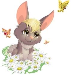 Rabbit on the field vector