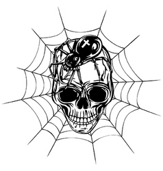 Skull spider and web vector