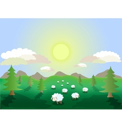 Sheep in the meadow vector