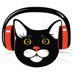 Cat music headphones vector
