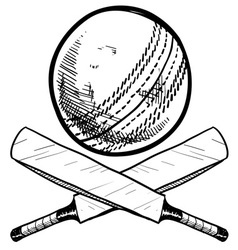 Doodle cricket ball bat vector