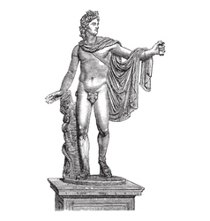 Apollo belvedere statue vector