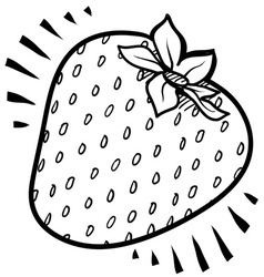 Doodle strawberry vector