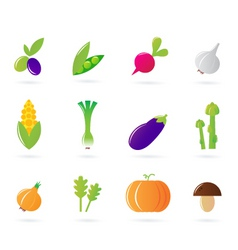 Fresh vegetable isolate icons vector