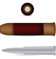 Bullet and shell isolated vector