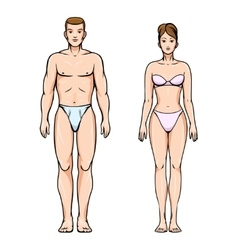 Man and woman healthy body figures vector