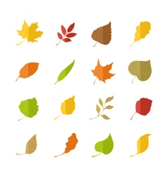 Set of leaves pictograms vector