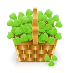 Basket with clover vector