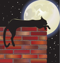 Nocturnal cat and moon vector