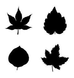 Icon set of leaves vector