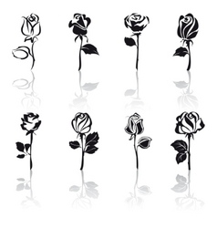 Icon set of roses with reflections vector