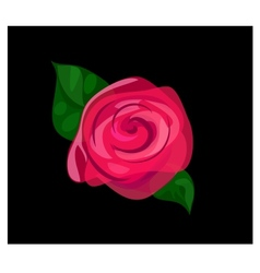 Contrast rose background vector