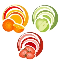 Fruits with decoration vector