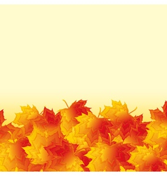 Autumn background with orange maple leaf fall vector