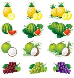 Pineapple watermelon coconut grape vector