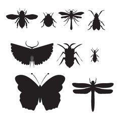 Black insect icon set vector