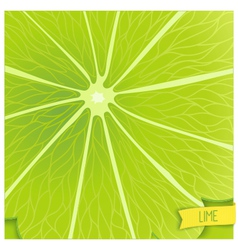 Just lime background vector