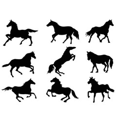 Horse silhouettes vector