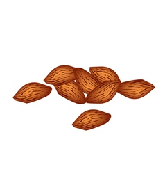 A stack of almonds on white background vector