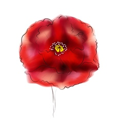 Digital watercolor poppy2 vector