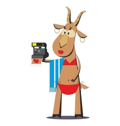 Goat in bathing suit making selfie 05 vector