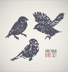 Ink hand drawn bird set vector