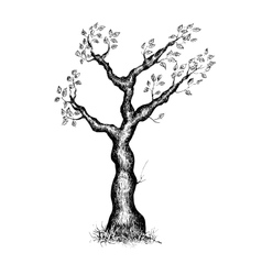 Black and white tree vector
