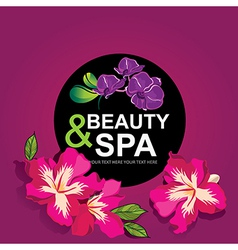 Icon design spa and beauty vector
