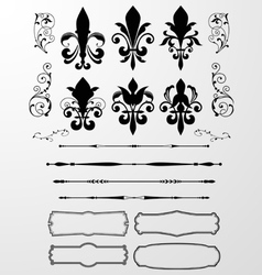 Classical decorative design element vector