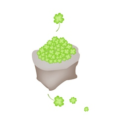 Fresh four leaf clovers in a sack vector