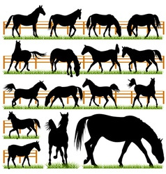 Set of 16 horses silhouettes vector