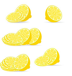 Sliced lemon vector