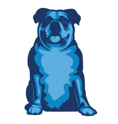 Bluebulldog vector