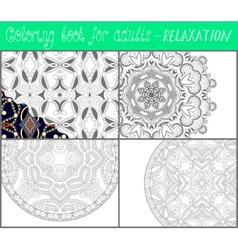 Coloring book page for adults - flower paisley vector