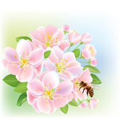 Flowering branch of apple with bee vector