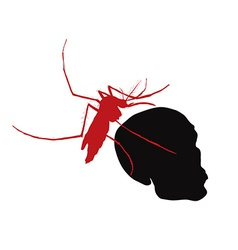 Red mosquito hold on human skull vector
