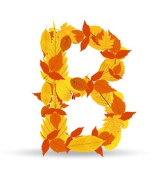 Autumn leaves font letter b vector
