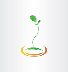 Plant seed germination design vector