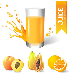 Juice in glass and fruits icons vector