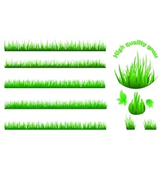 High quality grass set vector