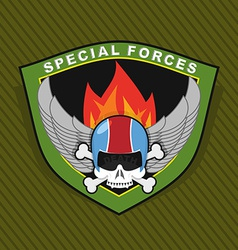 Military emblem with a skull and the weapon wings vector