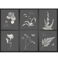 Floral card set vector