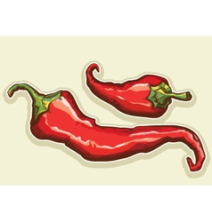 Red hot peppers vector